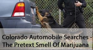 Colorado Automobile Searches - The Pretext Smell Of Marijuana